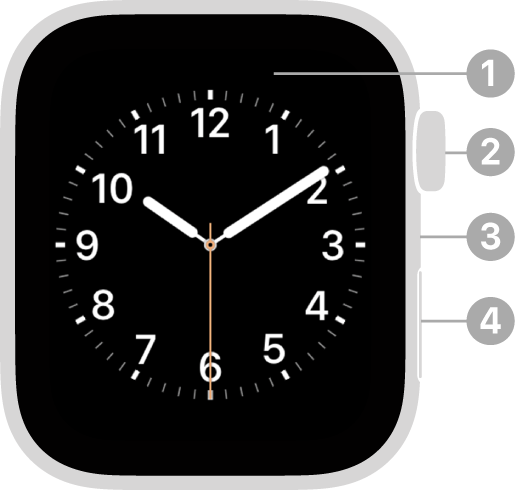 Bahagian hadapan Apple Watch Series 4 dengan petak bual yang menunjuk ke paparan, digital crown, mikrofon dan butang Sisi.