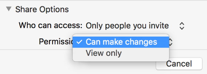 "The Share Options section of the collaboration dialog with the Permission pop-up menu open and ""Can make changes"" selected."