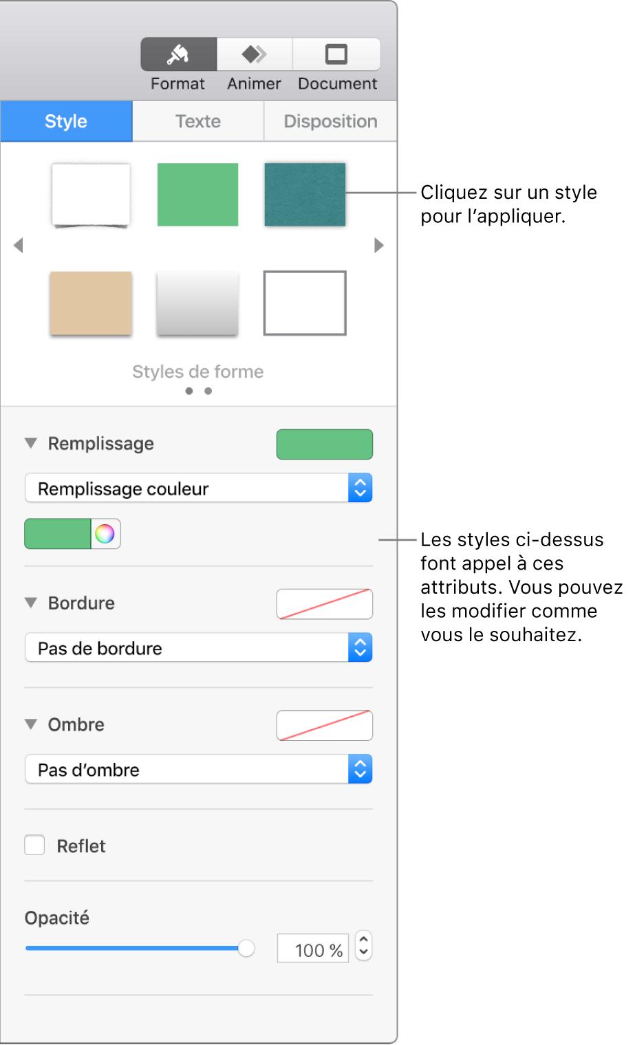 Styles et options de figure de la section Format de la barre latérale.