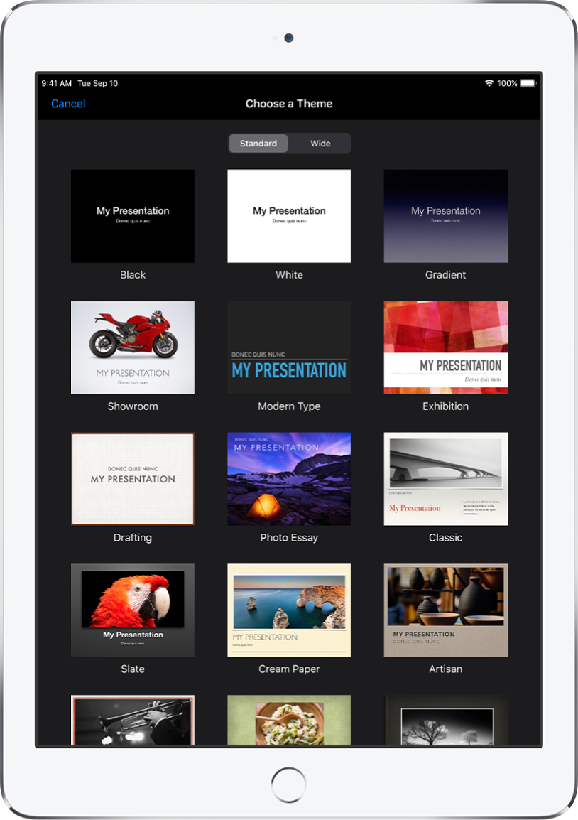 The theme chooser with buttons for Standard and Wide at the top. Thumbnail images of themes are shown below.