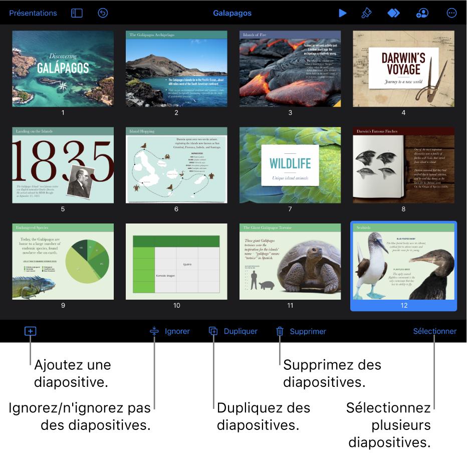 Présentation du mini panorama accompagnée de boutons en bas de l'écran, permettant d'ajouter, ignorer, dupliquer et supprimer des diapositives, ainsi que d'en sélectionner plusieurs.