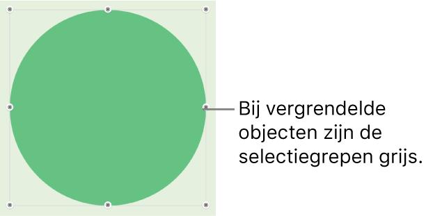 Een vergrendeld object met gedimde selectiegrepen.