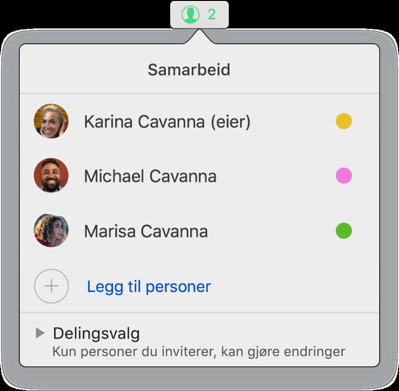 Samarbeid-menyen, som viser navnene til personer som samarbeider om regnearket. Delingsvalg er under navnene.