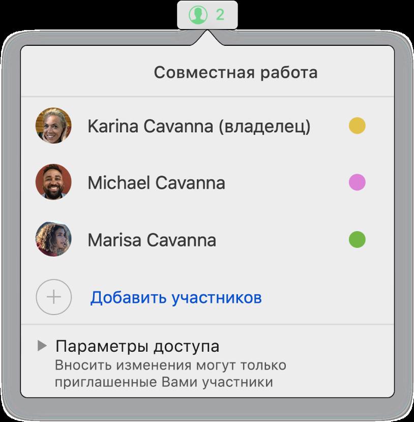 Меню «Совместная работа», в котором показаны имена людей, совместно работающих над таблицей. Под именами находятся параметры общего доступа.