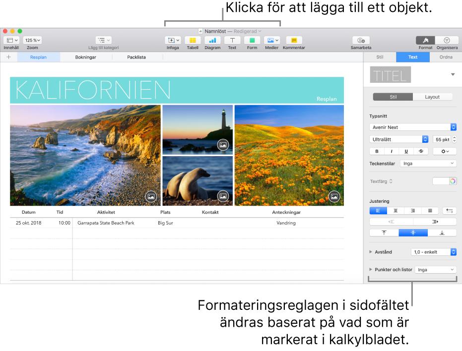 Numbers-fönstret med fliken Text i formatsidofältet öppen.