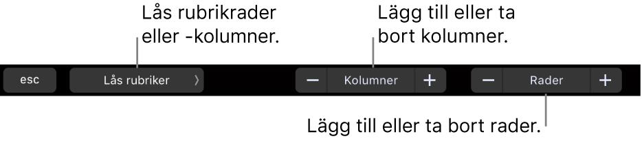 TouchBar på MacBook Pro med reglage för att låsa rubrikrader och rubrikkolumner, lägg till eller ta bort kolumner och lägga till eller ta bort rader.