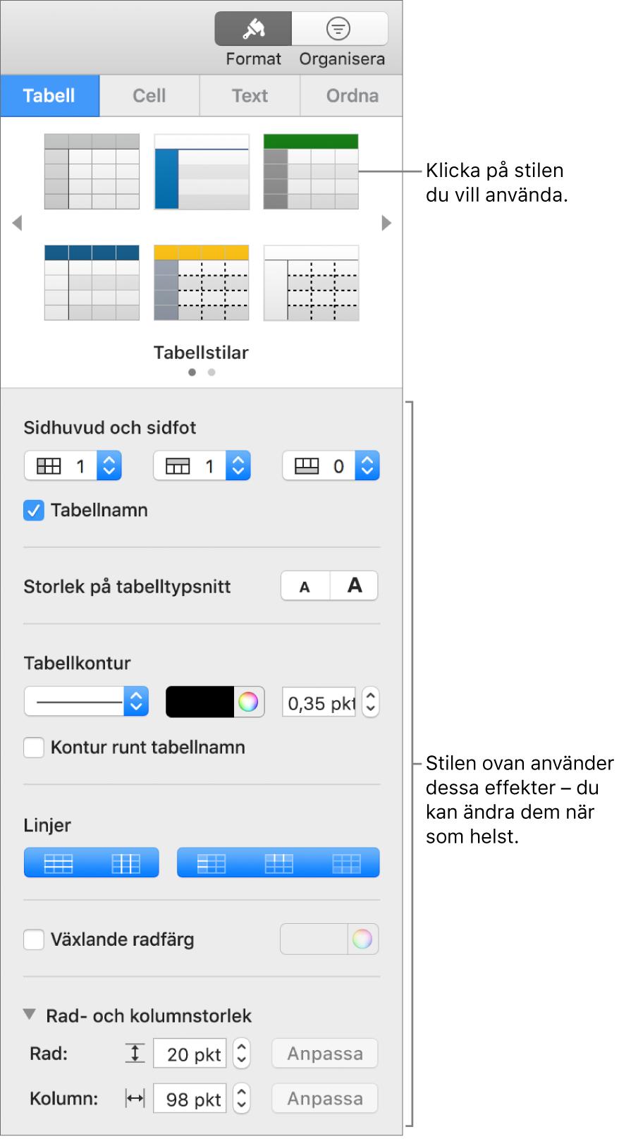 Formatsidofältet med tabellstilar och formateringsalternativ.
