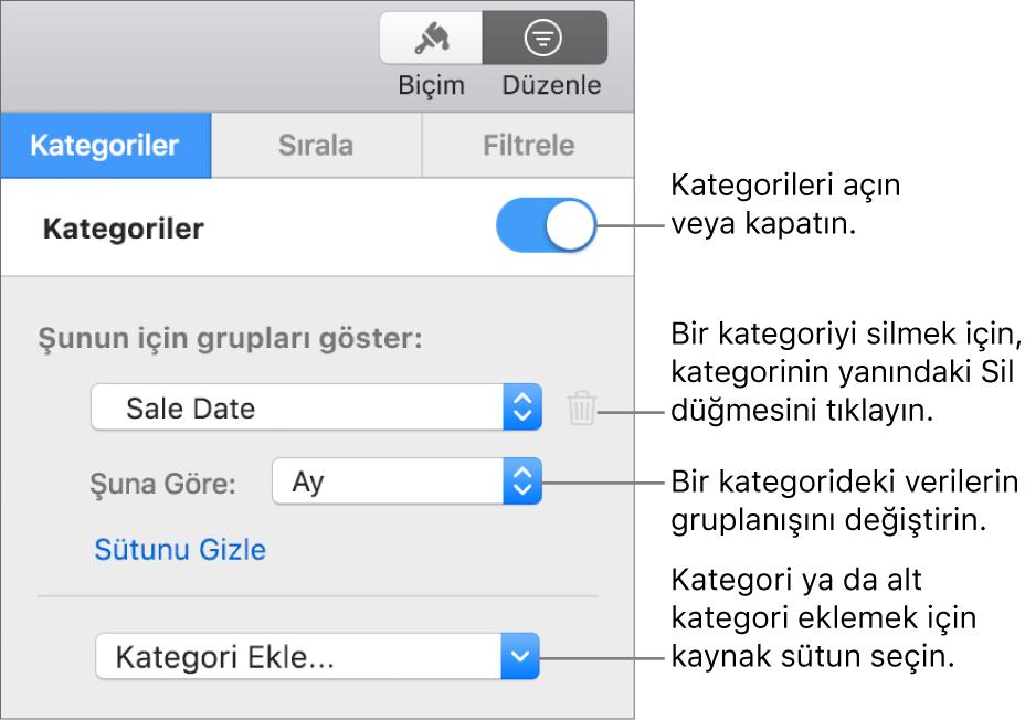 Kategorileri kapatma, kategorileri silme, verileri yeniden gruplama, kaynak sütunu gizleme ve kategori ekleme seçeneklerini içeren kategoriler kenar çubuğu.