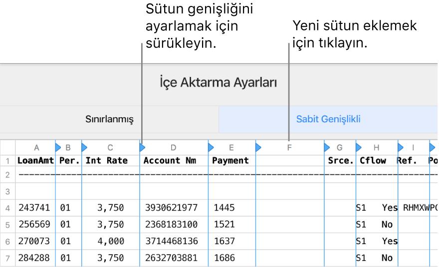 Sabit genişlikli metin dosyası için içe aktarma ayarları.
