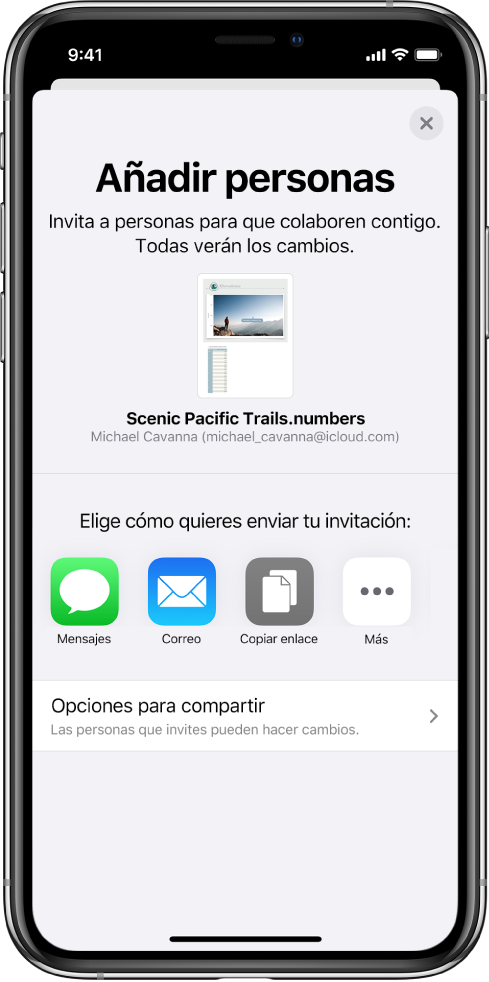 """La pantalla """"Añadir personas"""" mostrando una imagen del documento que se va a compartir. Debajo aparecen botones de las maneras de enviar la invitación, incluidos Mensajes y Mail, un botón """"Copiar enlace"""" y otros. En la parte inferior está el botón """"Opciones para compartir""""."""