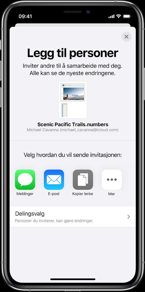 Legg til personer-skjermen som viser et bilde av dokumentet som skal deles. Nedenfor er knapper for ulike måter å sende invitasjonen på, blant annet Meldinger og Mail, Kopier kobling og Mer. Delingsvalg-knappen er nederst.