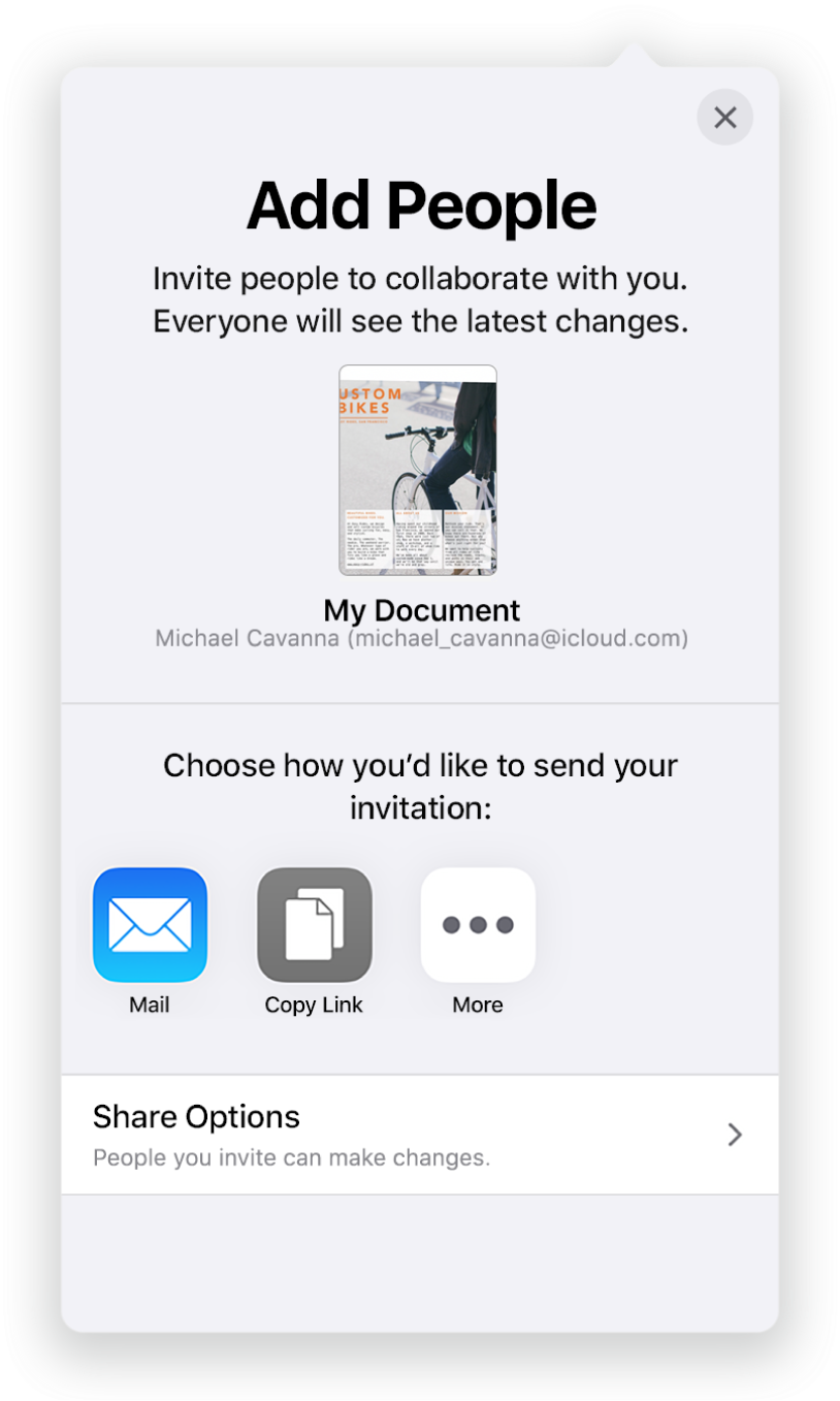 The Add People screen showing a picture of the document to be shared. Below it are buttons for ways to send the invitation, including Mail, Copy Link and More. At the bottom is the Share Options button.