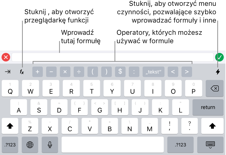 Klawiatura formuł zwidocznym ugóry edytorem formuł oraz widocznymi poniżej operatorami używanymi wformułach. Przycisk Funkcje, otwierający przeglądarkę funkcji, znajduje się po lewej stronie operatorów, aprzycisk Czynności widoczny jest po prawej.