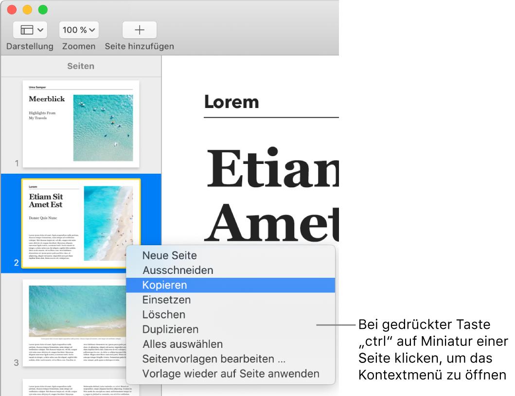 Miniaturdarstellung der Seiten mit einer ausgewählten Miniatur und dem geöffneten Kontextmenü