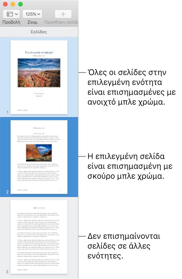 Η πλαϊνή στήλη προβολής μικρογραφιών με την επιλεγμένη σελίδα επισημασμένη με σκούρο μπλε και όλες τις σελίδες στην επιλεγμένη ενότητα επισημασμένες με ανοιχτό μπλε.
