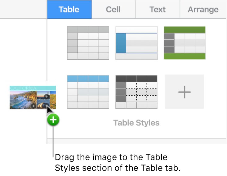 Dragging an image into the table styles pane to create a new style.