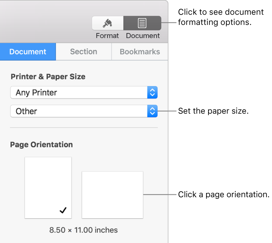 Controls for setting paper size and orientation.
