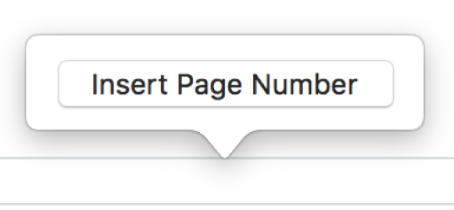 The Insert Page Number popover above the footer.
