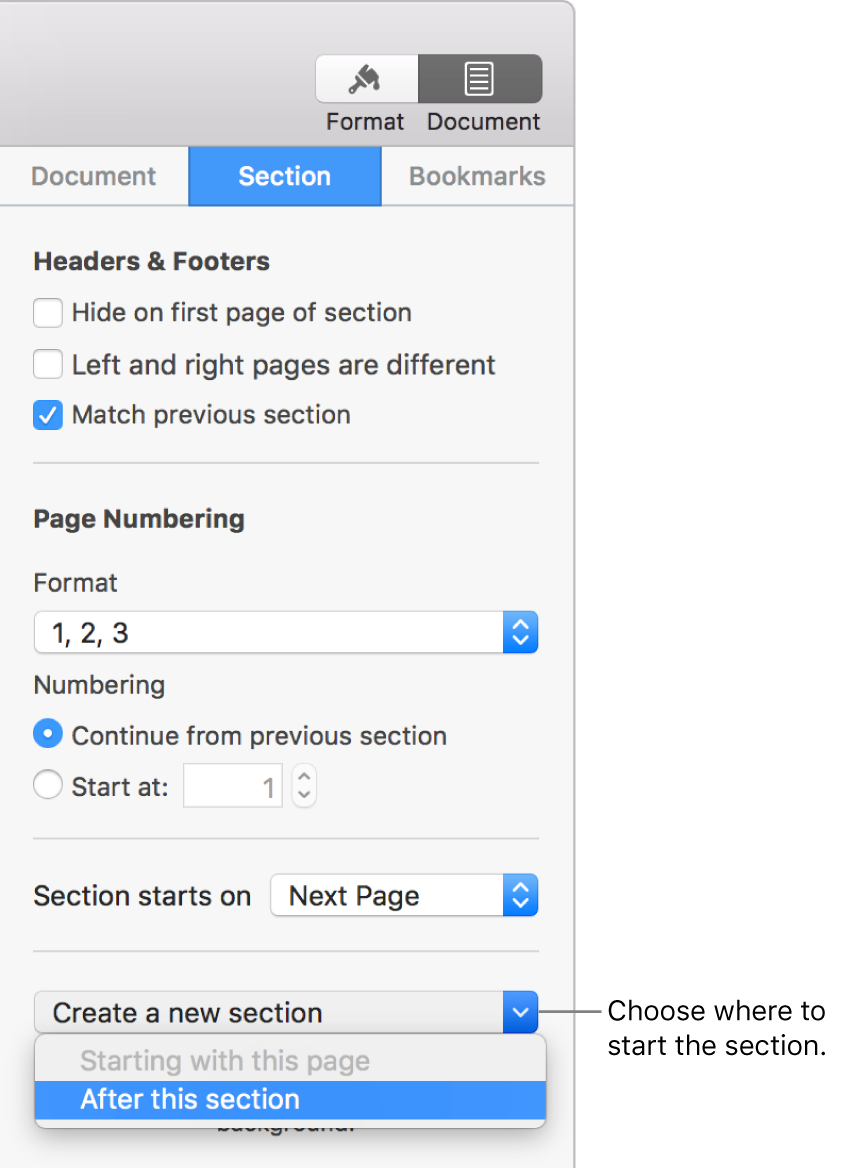The Section tab with controls for headers, footers, page numbers, and where to start the new section.