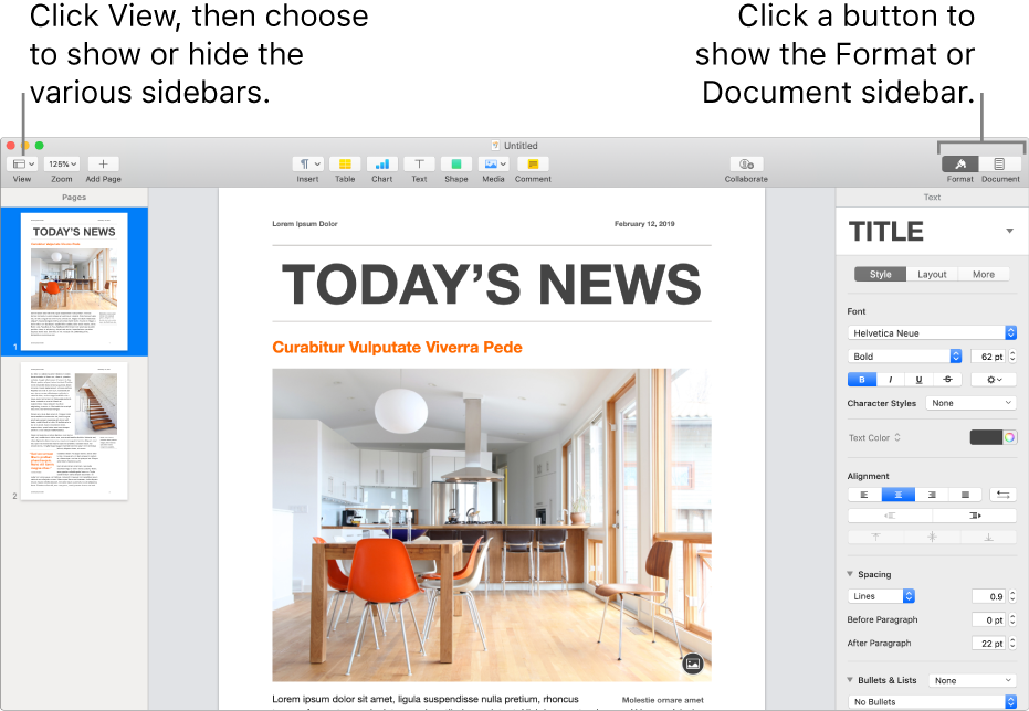 The Pages window with callouts to the View menu button and Format and Document buttons in the toolbar. Sidebars are open on the left and right.