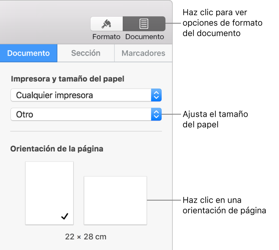 Controles para ajustar la orientación y el tamaño del papel.