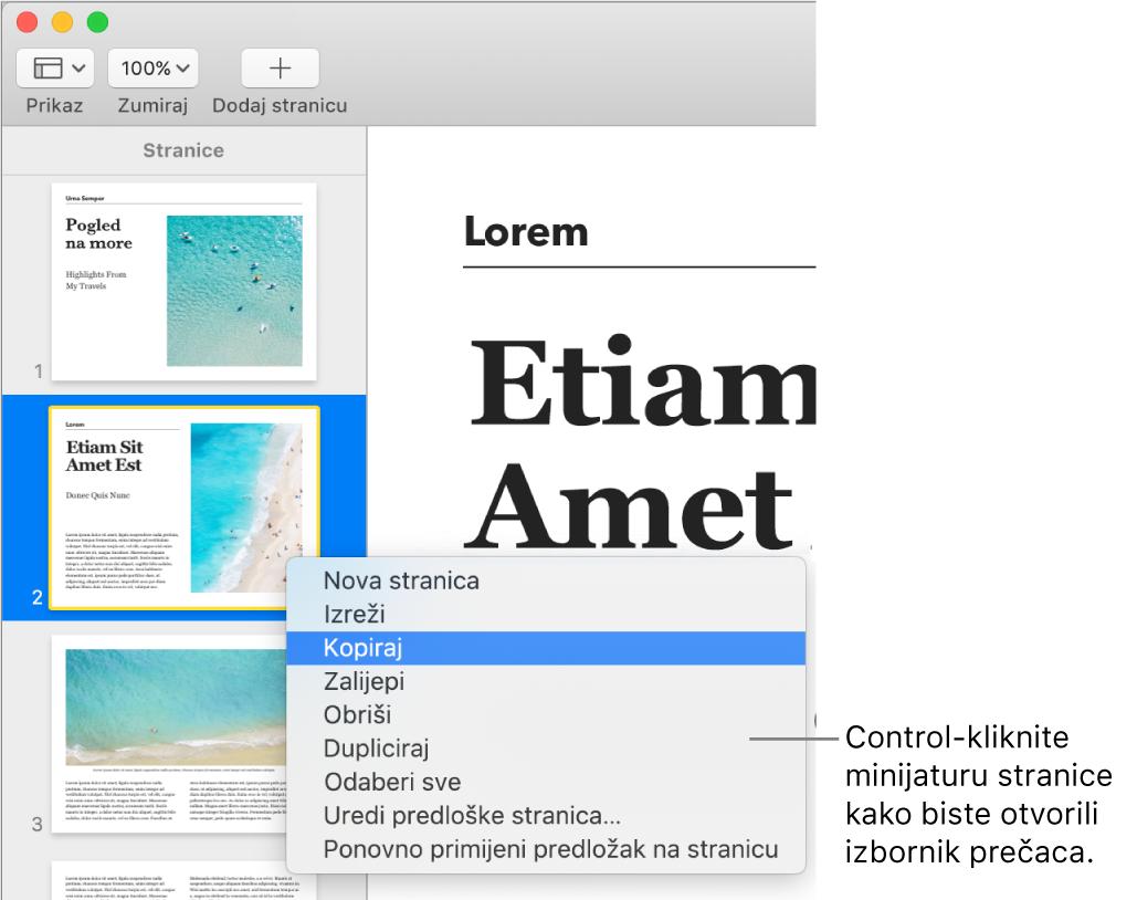 Prikaz minijatura stranica s jednom odabranom minijaturom stranice i otvorenim izbornikom prečaca.