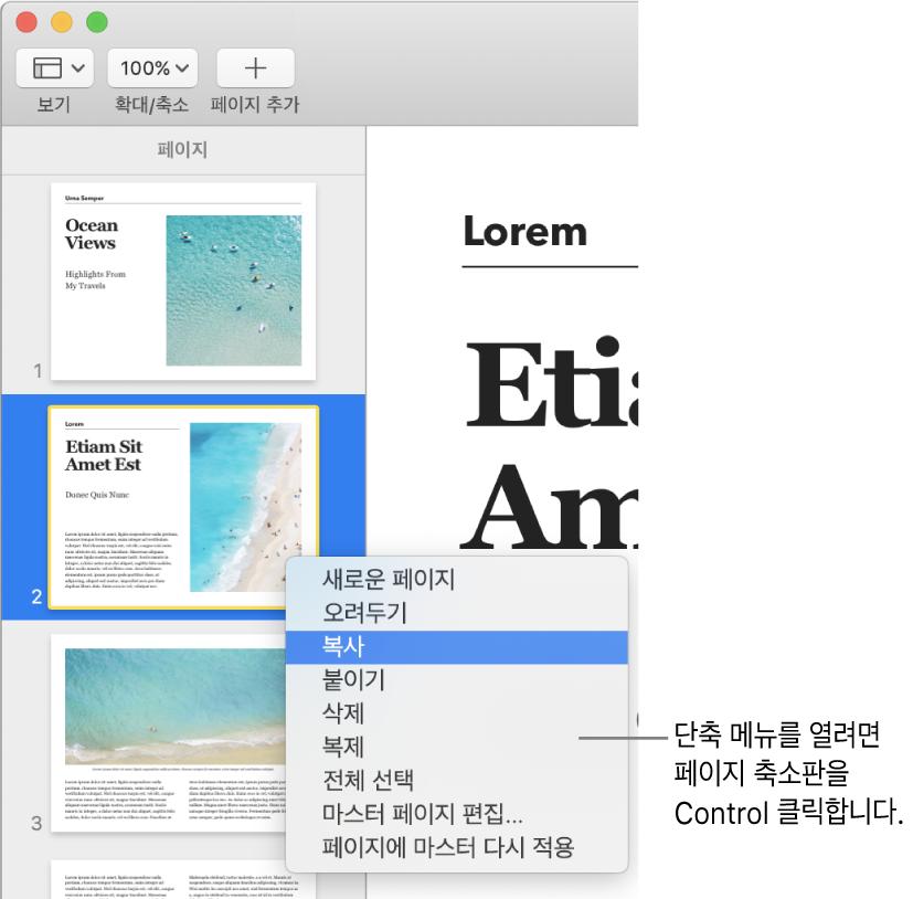 하나의 축소판이 선택되어 있고 단축키 메뉴가 열린 페이지 축소판 보기.