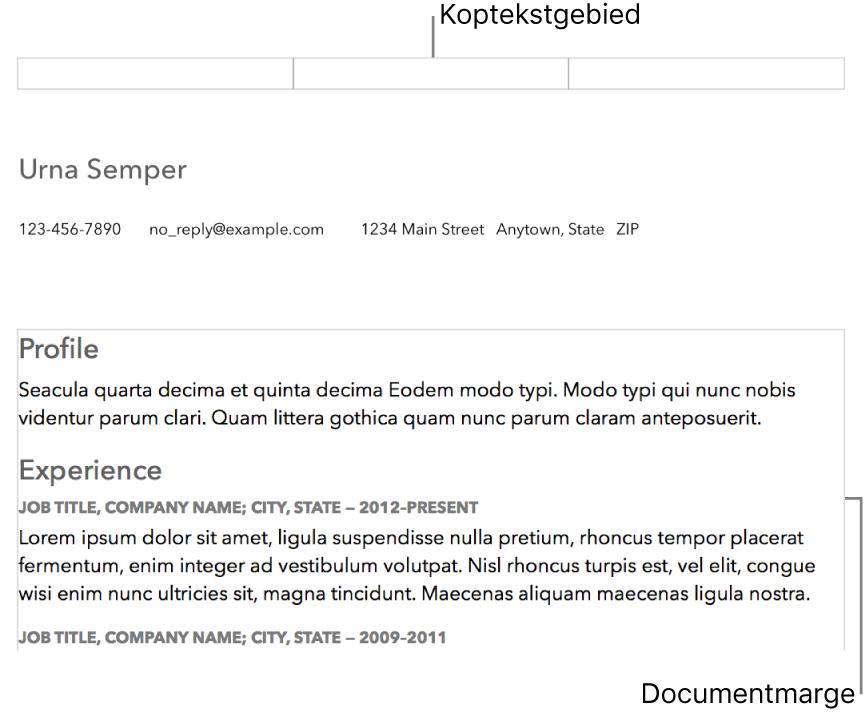 Lay-outweergave met koptekstgebied en documentmarges.
