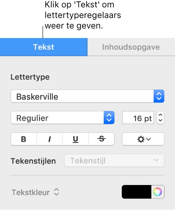 Het tabblad 'Tekst' in de navigatiekolom 'Opmaak' met regelaars voor het wijzigen van het lettertype en de lettergrootte en voor het toevoegen van tekenstijlen.