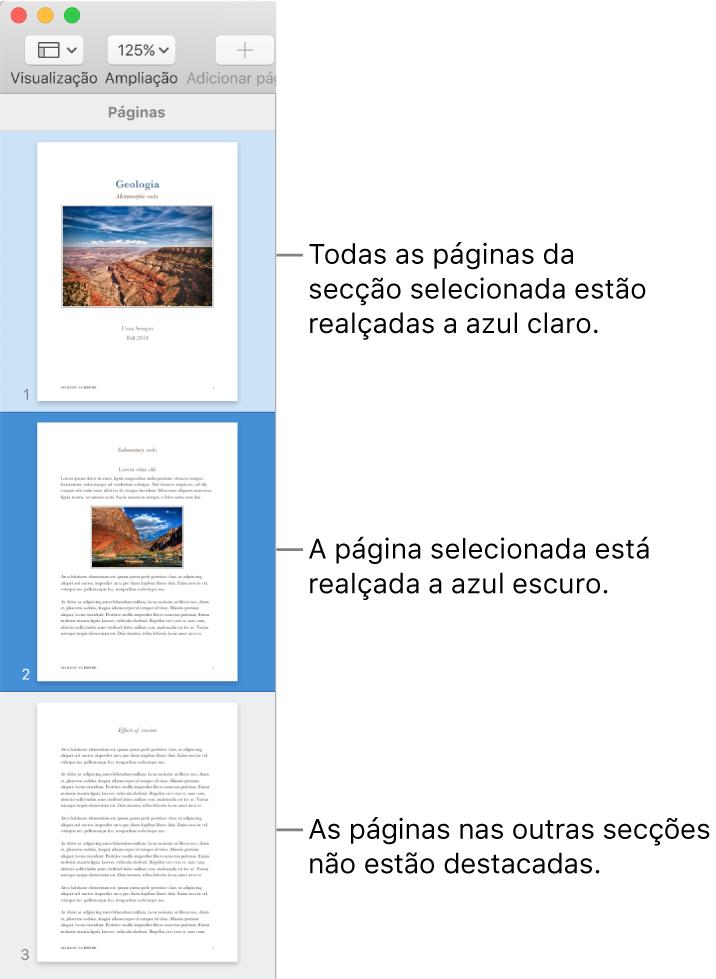 A barra lateral de vista das miniaturas com a página selecionada destacada a azul escuro e todas as páginas na secção selecionada destacadas a azul claro.