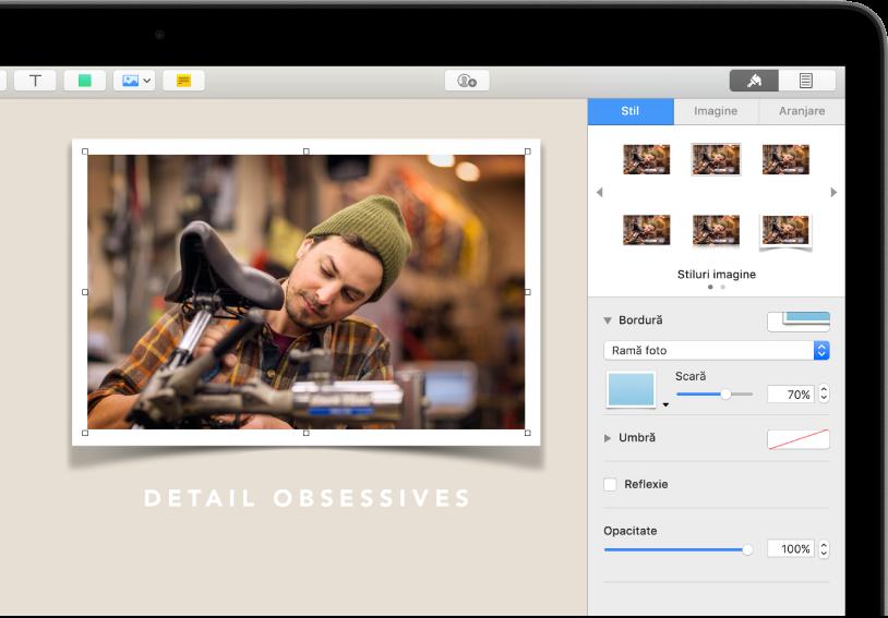 Comenzile Format pentru modificarea dimensiunii și a aspectului imaginii selectate. Butoanele Stil, Imagine și Aranjare se află de-a lungul părții de sus a comenzilor.
