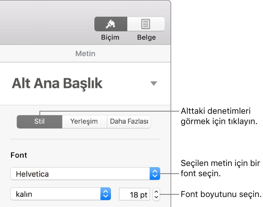 Fontu ve font puntosunu ayarlamak için Biçim kenar çubuğunun Stil bölümündeki metin denetimleri.