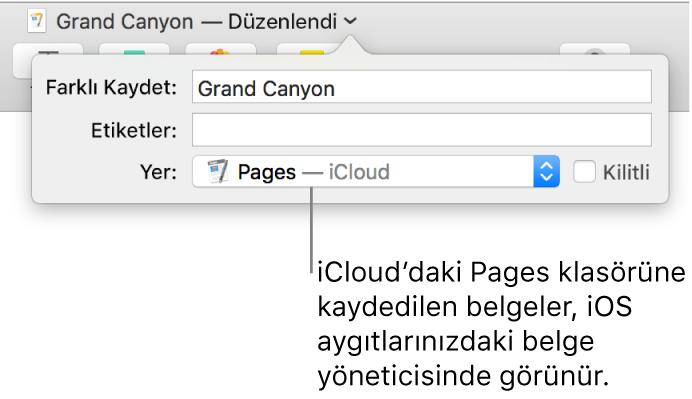 Yer açılır menüsünde Pages—iCloud olan bir belge için Kaydet sorgu kutusu.