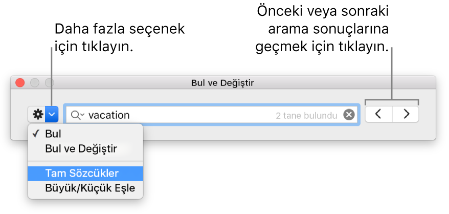 Bul, Bul ve Değiştir, Tam Sözcükler ve Büyük ve Küçük Harfleri Eşleştir seçenekleri için düğme belirtimlerini içeren Bul ve Değiştir penceresi; gezinme okları sağ taraftadır.