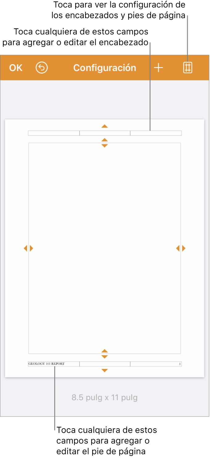 Vista de la configuración del documento con tres campos en las áreas superior e inferior del documento.