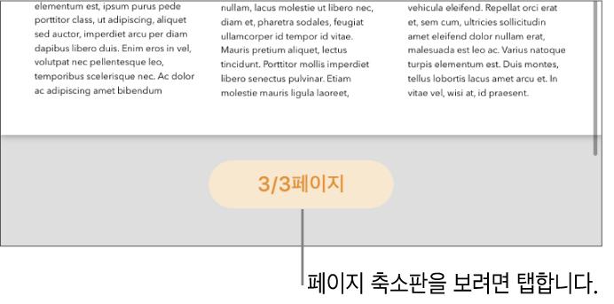 화면 하단 가운데에 페이지 번호 버튼이 보이는 열린 문서.