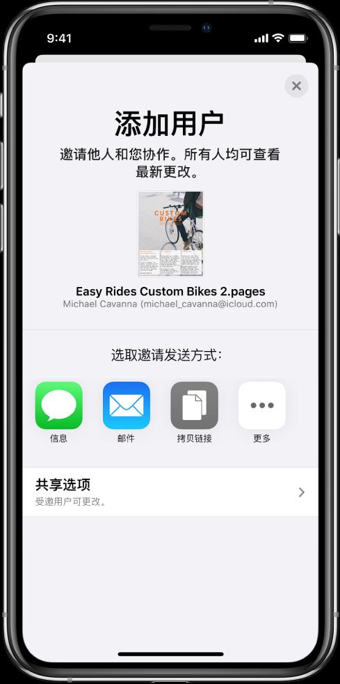 """""""添加用户""""屏幕,显示要共享文稿的图像。其下方是邀请发送方式的按钮,包括""""信息""""、""""邮件""""和""""拷贝链接""""等。底部是""""共享选项""""按钮。"""