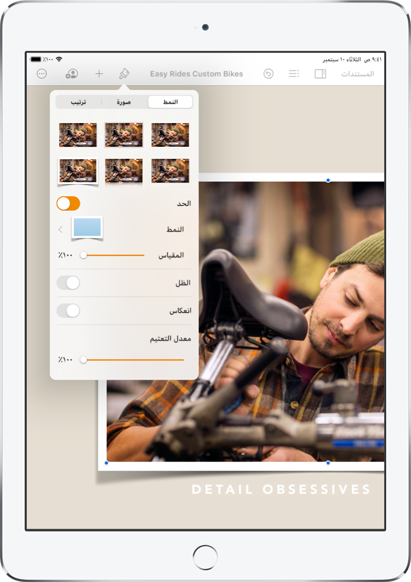 أدوات التحكم في التنسيق لتغيير حجم ومظهر الصورة المحددة. أزرار النمط وصورة وترتيب موجودة على طول الجزء العلوي من أدوات التحكم.