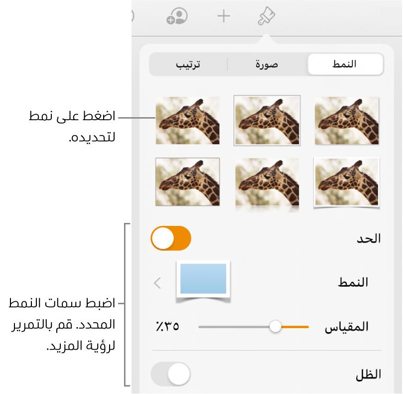 علامة تبويب النمط الخاص بأنماط الصور في الجزء العلوي وزر خيارات النمط في الجزء السفلي.