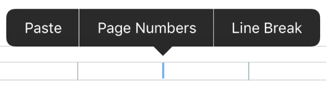 Header pop-up for adding page numbers.