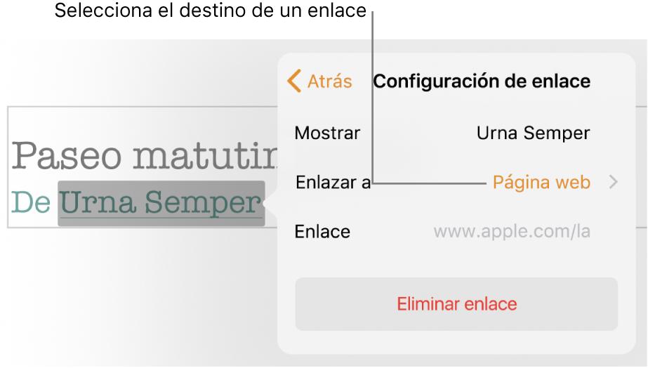 """La pantalla emergente de Configuraciones de enlace con Campo de visualización (enlace al sitio web) y Campo de enlace. Al final de la ventana emergente está la opción """"Eliminar enlace""""."""