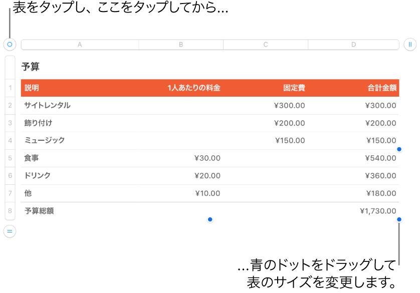 選択された表。サイズを変更するための青いドットが表示された状態。