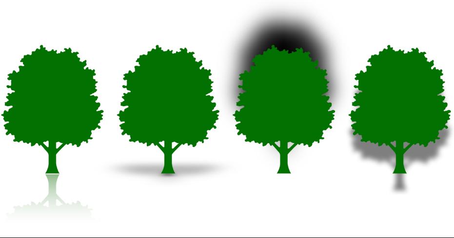 Vier bomen met verschillende weerspiegelingen en schaduwen. De eerste boom heeft een weerspiegeling, de tweede boom heeft een contactschaduw, de derde boom heeft een kromme schaduw en de vierde boom heeft een slagschaduw.