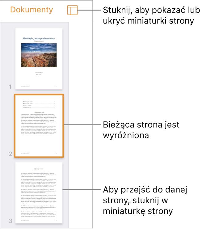 Widok miniaturek stron po lewej stronie ekranu. Zaznaczona jest jedna strona. Nad miniaturkami widoczny jest przycisk Opcje widoku.