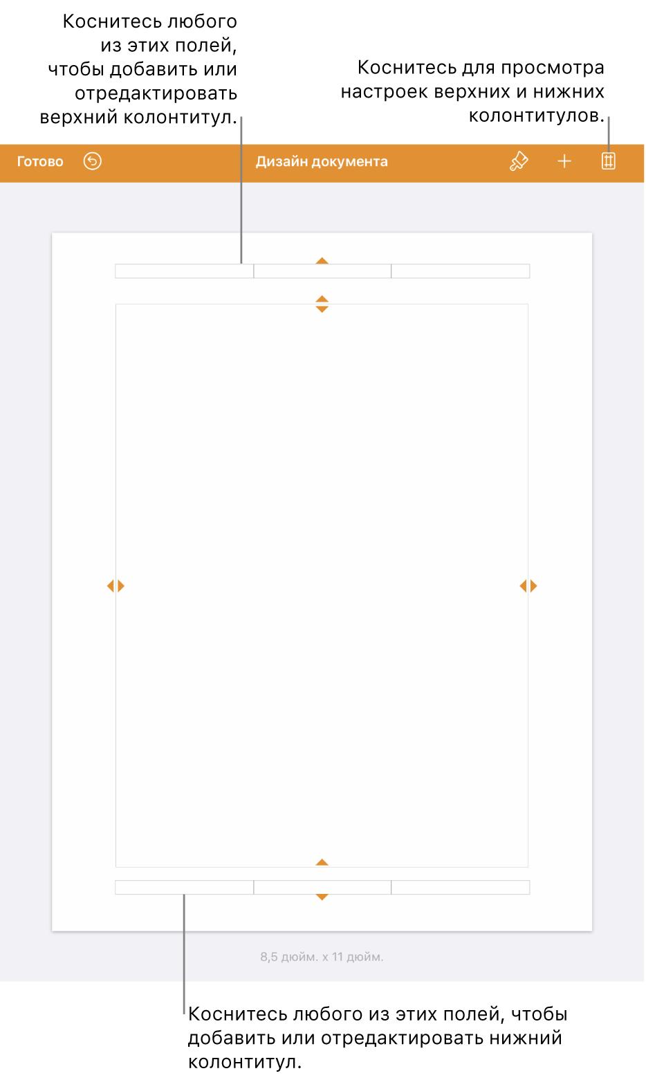 Режим просмотра «Дизайн документа» с тремя полями в верхней и нижней части документа.