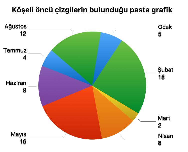 Pasta dilimlerinin dışında kalan değer etiketlerine ve etiketleri dilimlere bağlayan köşeli öncü çizgilere sahip bir pasta grafiği.
