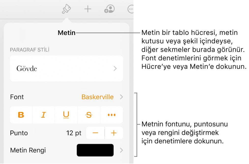 Paragraf ve karakter stillerini, fontunu, boyutunu ve rengini ayarlamak için Biçim menüsündeki metin kontrolleri.