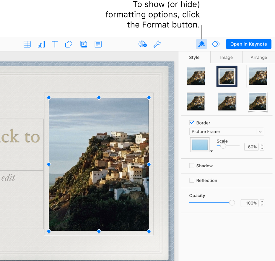 An image in a presentation is selected, and controls to change its appearance (for example, border and shadow checkboxes) show in the sidebar on the right.