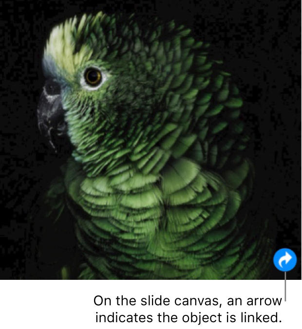 An image on a slide canvas with a link icon (it looks like a curved arrow) in the lower-right corner.