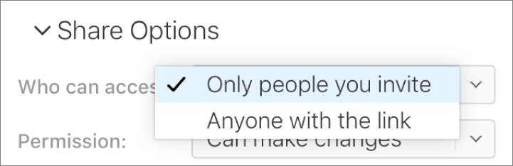 """The """"Who can access"""" pop-up menu in Share Options."""